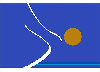 Ben Crooks's flag symbolises a swimmer diving into the water