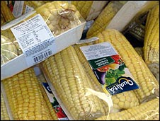 Corn cobs on sale in Brazilian supermarket