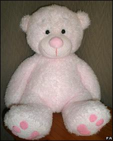 Teddy bear used to hide camera