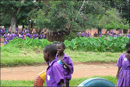 Schoolchildren wearing purple uniforms in Bugiri district in eastern Uganda [Photo: Kristen Mbabazi]