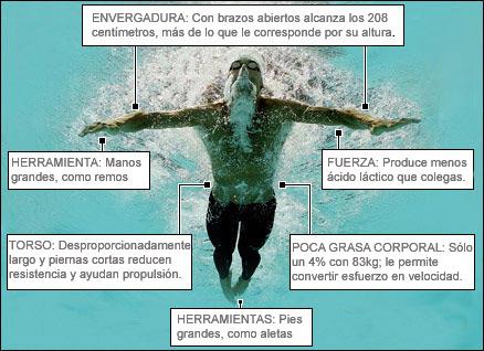 Gráfico, Michael Phelps.