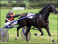 Tregaron Races in 2007. Photo: Irfon Bennett for BBC Where I Live