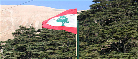 Lebanese flag backed by cedar wood