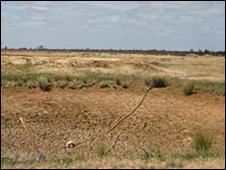 Dry cattle dam