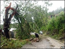 A man cuts up a tree felled by severe weather from Tropical Storm Hanna in Kenscoff, Haiti