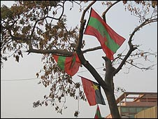MPLA and Unita flags hanging in a tree