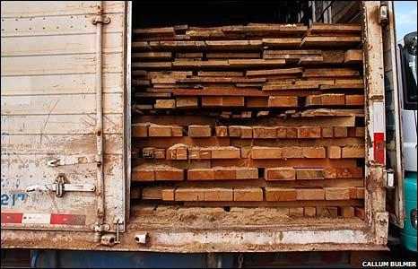 Logs inside truck