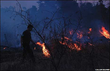 Man walking in front of forest fire