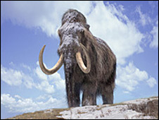 Mammoth (BBC)