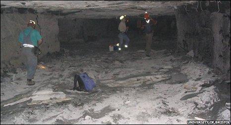Coal seam (University of Bristol)