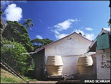 Barrels collect rainwater from guttering