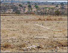 Dry barren land in Chivi, Masvingo [Pic: Matthew Cochrane - IFRC]