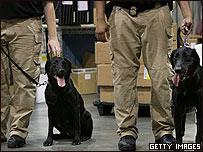 Agentes de la Agencia de Seguridad y Transporte