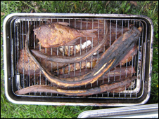 The poachers' barbecued fish (photo courtesy of the Environment Agency)