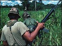 Erradicaci�n de cultivos il�citos en Bolivia