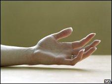 A female hand, palm up