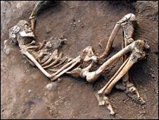 Roman skeleton