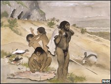 Neanderthal (NHM)