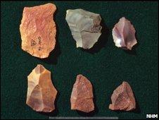 Neanderthal tools (NHM)