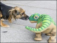 Pleo and a dog