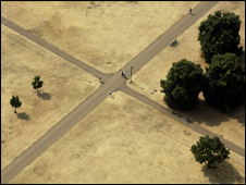 Dried grass in Hyde Park, London (Image: BBC)