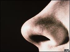 Man's nose