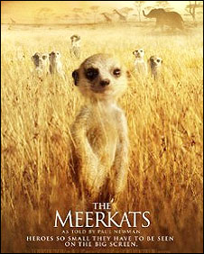 The Meerkats film poster