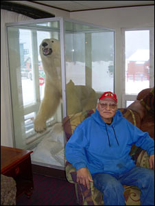 inupiat eskimo guide Sam Leavitt, sits in stuffed polar bear in Top of the World Hotel, Barrow, Northern Alaska