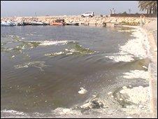 Dubai beach sewage