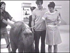 John Noakes, Lulu the elephant, Peter Purves and Valerie Singleton