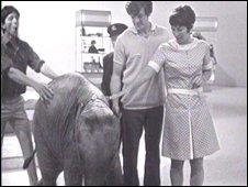 John Noakes, Lulu the elephant, Peter Purves and Valerie Singleton