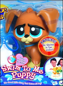 Swim to me puppy