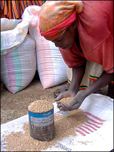 A woman with wheat in Addis, Ethiopia