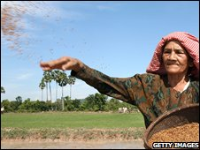 A female rice farmer in Cambodia