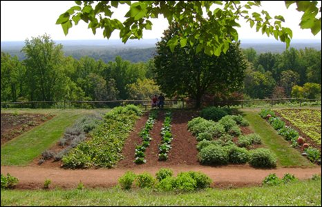Vegetable garden at the Monticello plantation