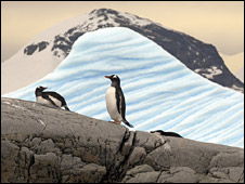 Penguins in the Antarctic Peninsula