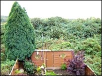 The Brookmans rear garden