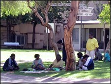 Aboriginal people sit beneath a tree in Alice Springs, the Northern Territory