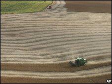 Soy field in Brazil