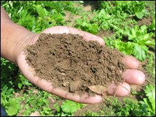 Soil from the ponds is used as fertiliser