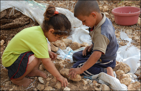 Ahmad (5) and Suha (3) play during olive harvest