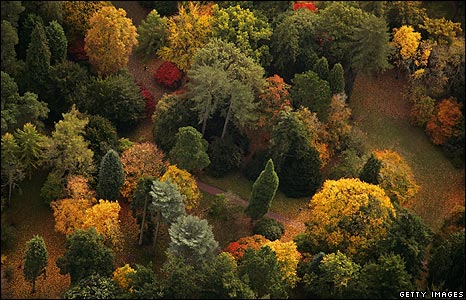 Autumn at the National Arboretum in Westonbirt, Gloucestershire, UK