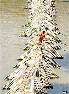 A labourer manoeuvres bamboo poles across the river at Damcherra, some 225kms north of Agartala in India