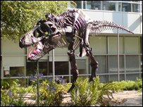 Google's dinosaur sculpture
