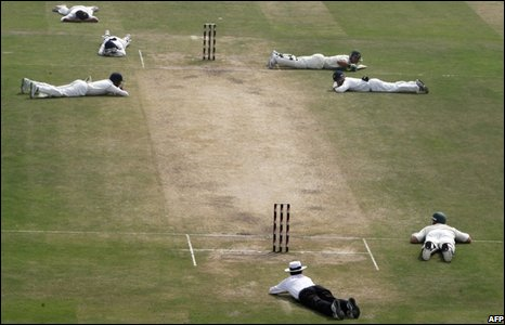 Australian and Indian cricketers and the umpire lie on the ground to avoid bees during a match in New Delhi, India.