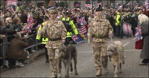 Soliders with Irish Wolfhound mascots