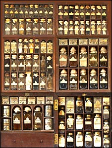 The medicine chest used to treat Bonnie Prince Charlie (as owned by his personal physician Sir Stuart Thriepland)