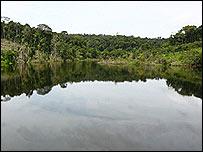 R�o Amazonas