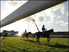 "Horses in the sunshine after competing in the Lanson Champagne Novices"" Handicap Hurdle at Exeter Racecourse"