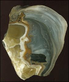 Stalagmite sample (AAAS/Science)